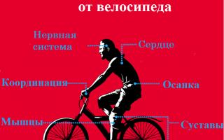 Почему вам нужен велосипед, чтобы быть здоровым?