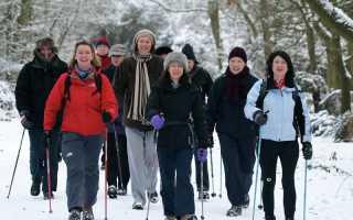 Приятной прогулки: какая обувь подходит для скандинавской ходьбы