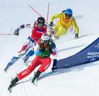 Ски-кросс: первый снег нового сезона
