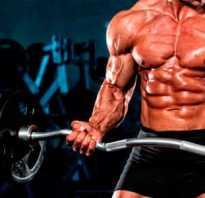 Почему не накачиваются мышцы. Не растут мышцы