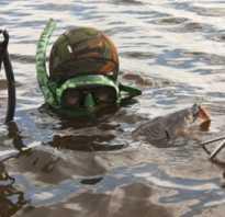 Выбираем маску и трубку для подводной охоты
