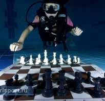Гибрид дайвинга и шахмат: в Лондоне спортсмены сыграли в шахматы под водой