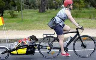 Как сделать телегу для велосипеда своими руками