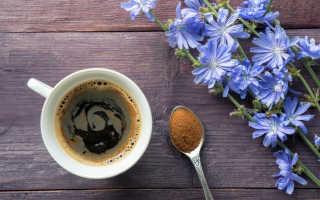 5 причин пить цикорий вместо кофе