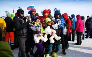 В Карелии пройдёт чемпионат мира по сноукайтингу