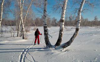 Как улучшить дыхание при беге на лыжах. Польза и виды лыжной ходьбы