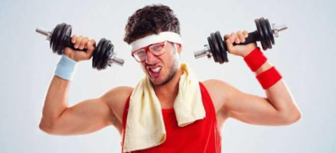 Чтобы вырастить мышцу на есть. Прекращение тренировок: как сохранить мышцы? Практически советы