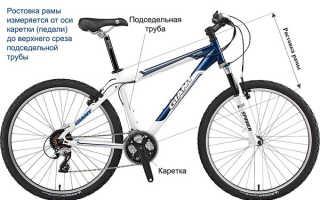 Как выбирать велосипед по росту