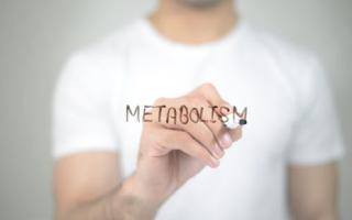 Ускоряем метаболизм: 5 способов сделать это, не ограничивая себя в сладком