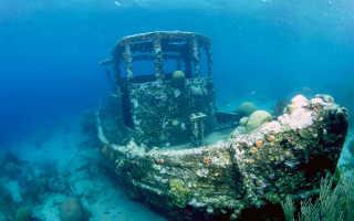 Выбор камеры для подводной съёмки
