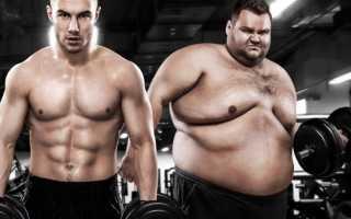 Похудение с помощью спорта: пять спорных фактов