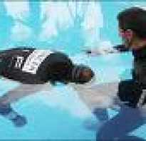 Тренировка: статическое апноэ (static apnea)